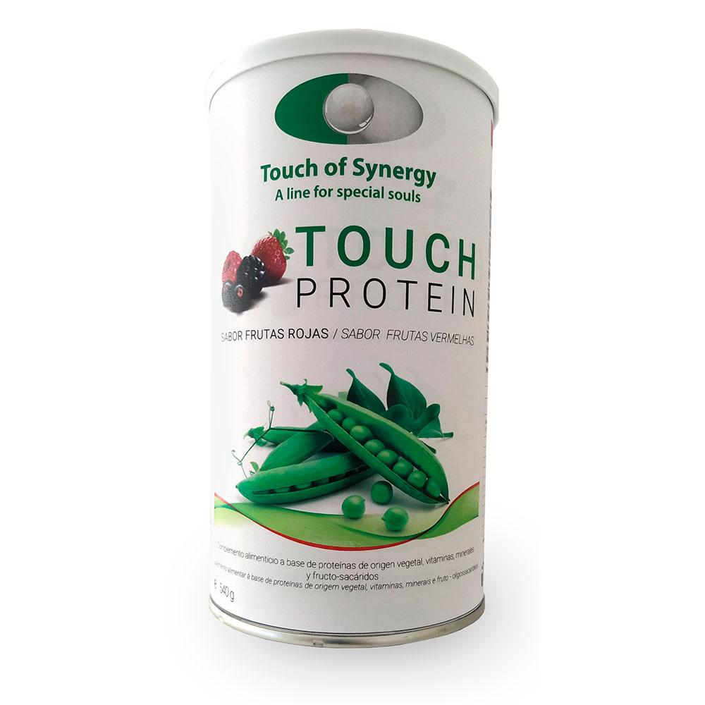 TOUCH PROTEIN 540g