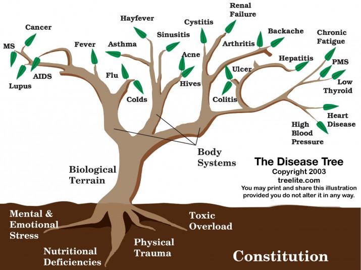 ABC+D approach health (by Steven Hornes)